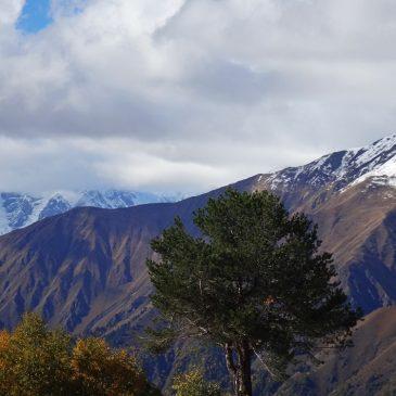 Gražiausios Gruzijos vietos: ruduo Mestijos kalnuose - spalvingi medžiai ir snieguotos viršūnės