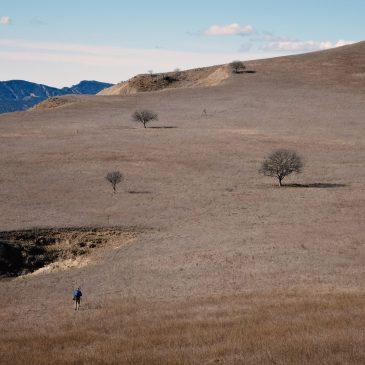 Gruzijos gamtoje: žmogus, einantis per Vašlovani dykumą