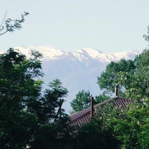 Гостевой дом Вахтанга: вид из окна на верхушки зеленых деревьев и на горы далеко