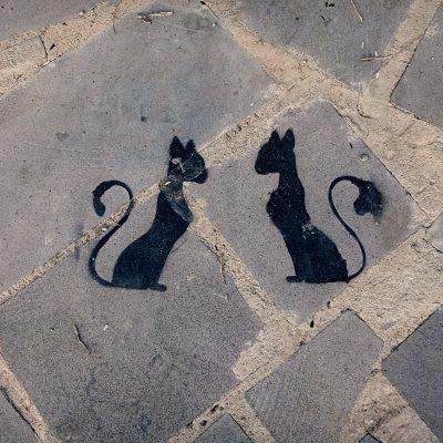 Gruzijos gamtoje: piešinys ant grindinio Telavi mieste - dvi juodos katės, sėdinčios viena priešais kitą